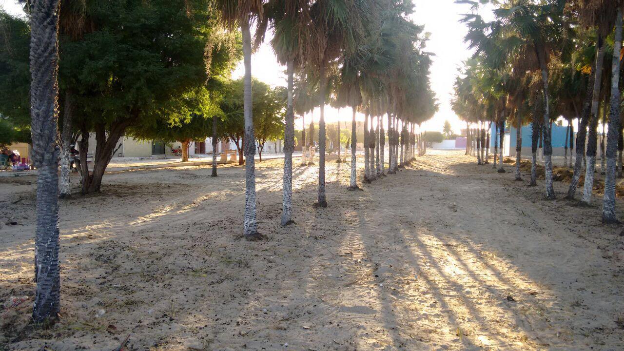 Praça do Salinópolis depois do mutirão de limpeza